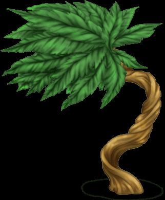 Дерево Аквапарк