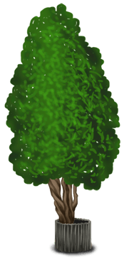 Дерево 2