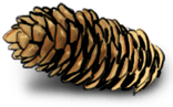Щепотка хлеба