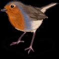 Весенняя птица