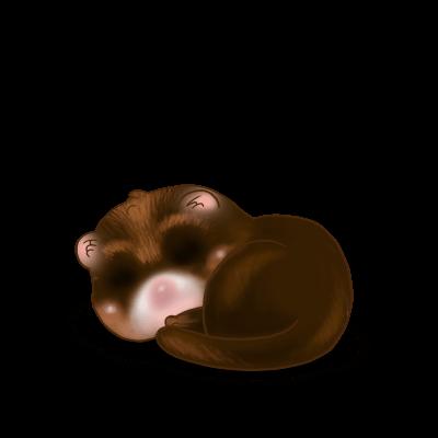 Принять хорек шоколад