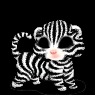 Принять хорек зебра