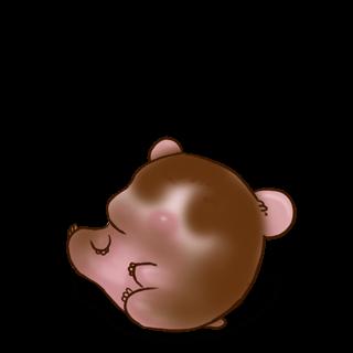 Принять хомяк Молочный шоколад