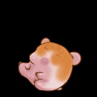 Принять Hamster Сирия
