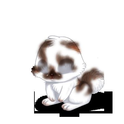 Принять кролик Коричневый и белый