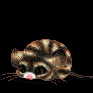 Принять мышь Bounette