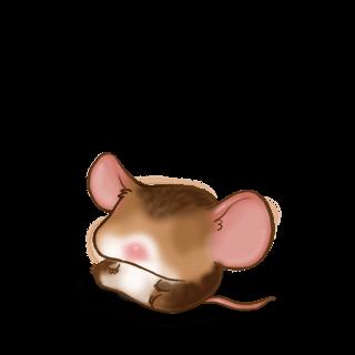 Принять мышь каштановый