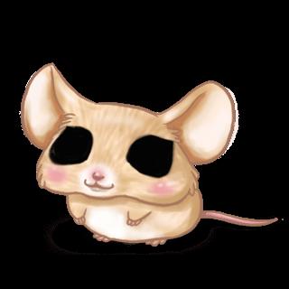Принять мышь китайский