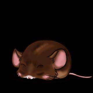 Принять мышь шоколад