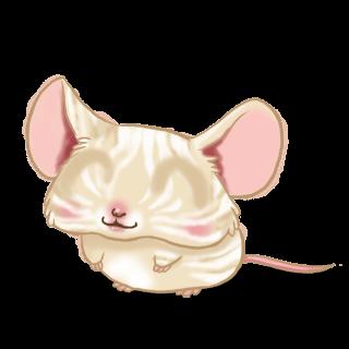 Принять мышь крем