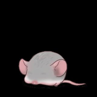 Принять мышь серебро