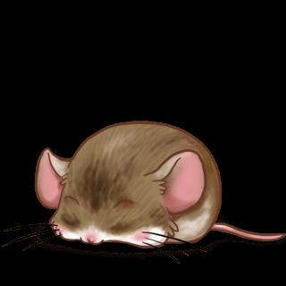 Принять мышь кафе