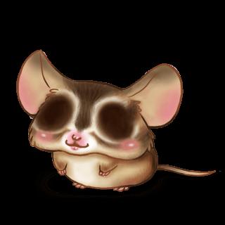 Принять мышь белочка