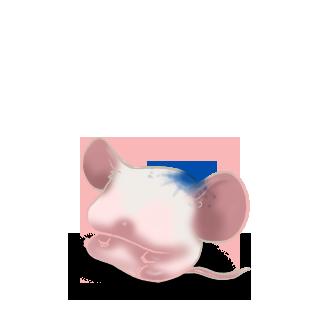 Принять мышь Классический абрикос