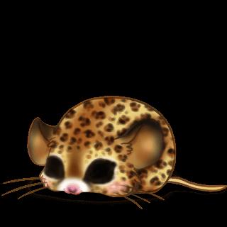 Принять мышь мисс