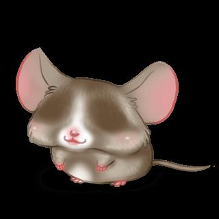 Принять мышь пралине