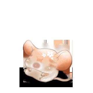 Принять мышь весна