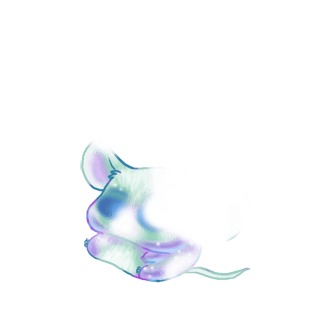 Принять мышь Shiba Inu