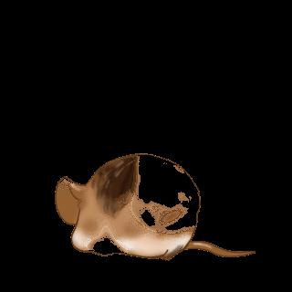 Принять мышь белый