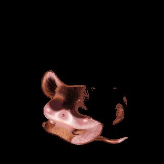 Принять мышь Cromimi