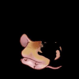 Принять мышь ириска
