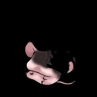 Принять Souris Simba