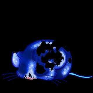 Принять мышь северный